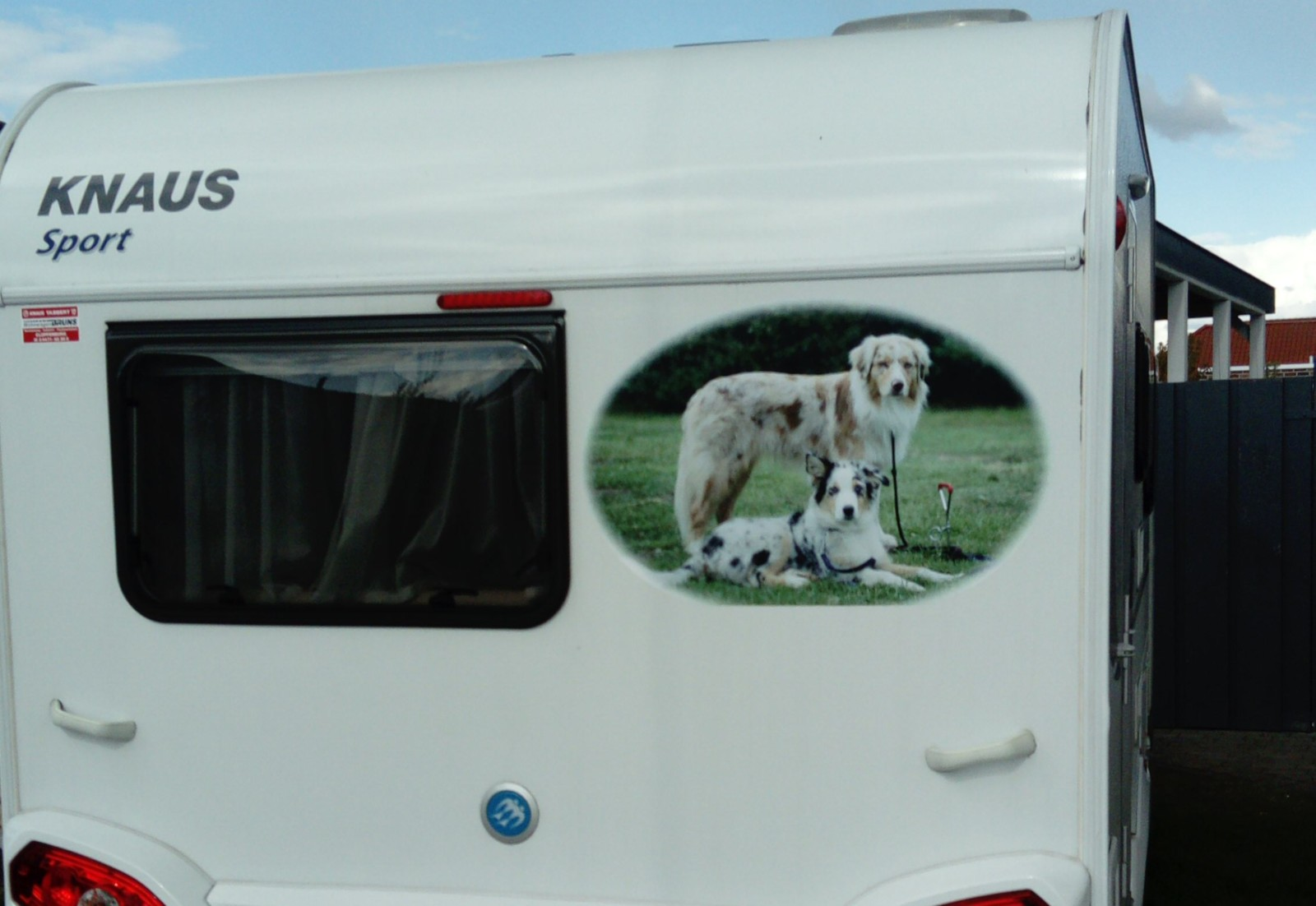 Tierfoto Aufkleber: für Wohnmobile, Wohnwagen oder Anhänger ...