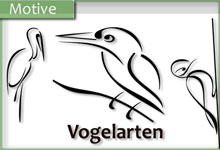 Exquisite Vögel