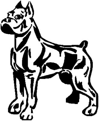 - Motiv Nr.:Hund_0165