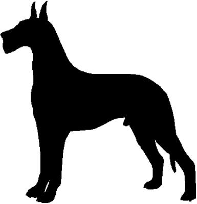 - Motiv Nr.:Hund_0679