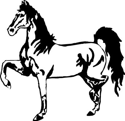 - Motiv Nr.:Pferd_0532