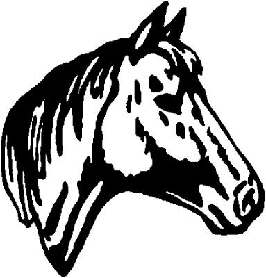 - Motiv Nr.:Pferd_0611