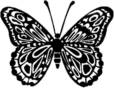 - Motiv Nr.:Schmetterling_0265