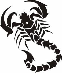 Scorpion Tribal 241