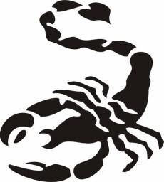 Scorpion Tribal 052