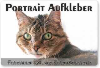 Tierportrait-Foto-Aufkleber
